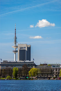 Hamburger Alster mit Fernsehturm Hamburg by Dennis Stracke