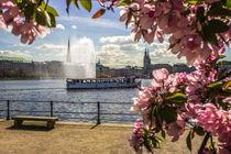 Alsterdamper auf der Binnenalster Hamburg by Dennis Stracke