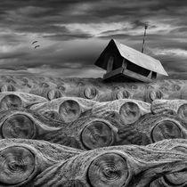 Stormy von Dariusz Klimczak