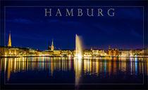 Hamburger Alster Panorama von Dennis Stracke