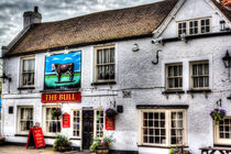Bull-pub-clr-1