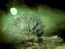 Baum-gruen