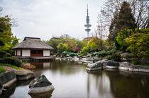 Hamburg - Japanischer Garten II von elbvue