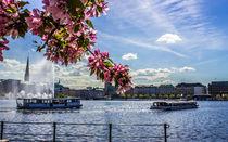Alsterschippern auf der Binnenalster Hamburg by Dennis Stracke