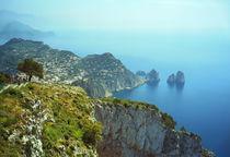 Capri2-faraglioni-2000