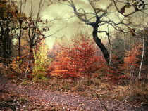 Herbstsonate in Moll by Heidrun Carola Herrmann