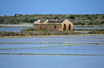 Ruine am See, Vendicari, Sizilien by sandarine