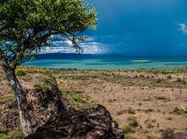 Blue Storm over Lake Baringo von Jim DeLillo