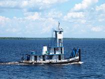 Schleppschiff auf dem Amazonas by reisemonster