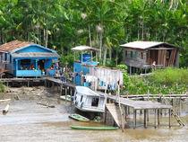 Wohnen am Amazonas by reisemonster