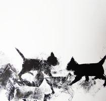Nachbars Katzen unterwegs by Heike Jäschke