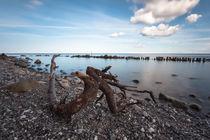 Rocky Beach by Simone Jahnke