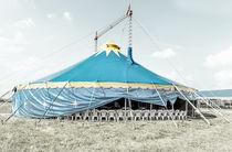 Zirkusrosahaus-014