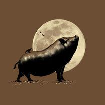 Barking-pig
