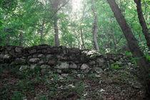 Aufstieg zur Burg Sooneck von Joachim P. Pudrel