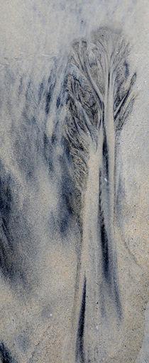 """Trees"" by fionn111"
