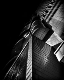 Peter Gilgan Centre for Research and Learning Toronto Ontario by Brian Carson