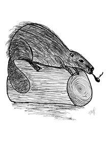 Gentry-beaver-signed