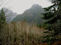 North-bend-middle-fork-042