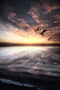 Water And Heaven by florin