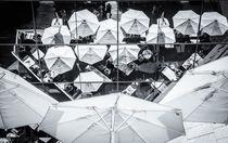 11-11perspektiven-ombrelo