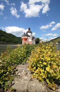 Pflaz bei Kaub am Rhein by buellom