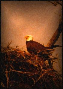 Bald-eagle-painting-vlazny