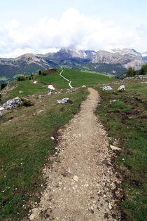 Gratwanderung by Jens Berger
