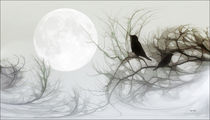 Jackdaws-in-the-moonlight