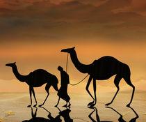 Walking The Sahara von Bedros Awak