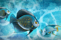 Blue-fish-fantasy