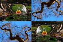 "Viererbild ""Herbstmetamophose"" by lisa-glueck"