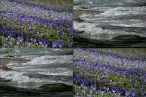 """Viererbild """"Wellen"""" von lisa-glueck"""