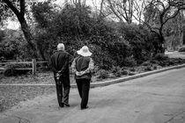 Couple strolling through the park. by Mel Surdin