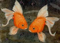 'Turtelfische' by Chris Berger