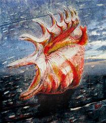 Shell von florin