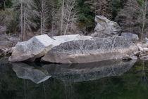 Merced River Reflections by Priya Ghose