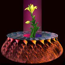 The Vase by Helmut Licht