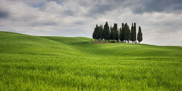 Img-1212-tuscany-italy