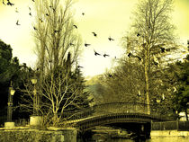 104-3307-filtered-the-flock-and-bridge