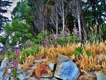 Purple Wildflowers & Wild Grasses  von Rick Todaro