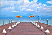 Orangefarbene Schirme von Gina Koch