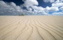 Amrum Sandstrand von Peter Rohde