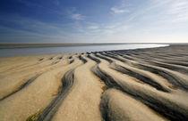 Sandstrand St.Peter-Ording von Peter Rohde