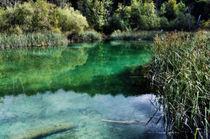 Romantic pond by Helmut Schneller