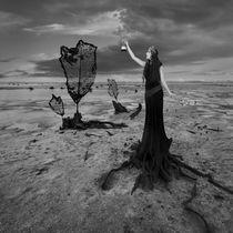 Carrying Light von Dariusz Klimczak