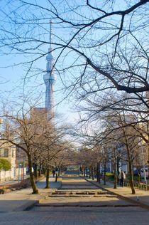 New Tokyo Tower von Ernesto Arias