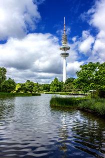 Planten un Blomen Hamburg by Dennis Stracke