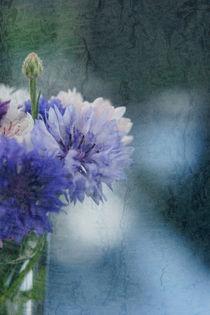 Kornblumen in Vase by Christine Bässler