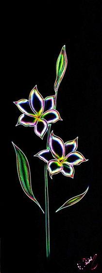 Glockenlilie Abstrakt 4 von Walter Zettl